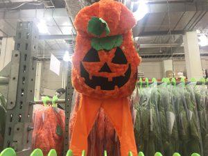 コストコのハロウィン衣装かぼちゃ
